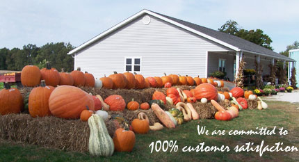 We are commited to 100% customer satisfaction